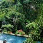 bagus_jati_swimming_pool_4